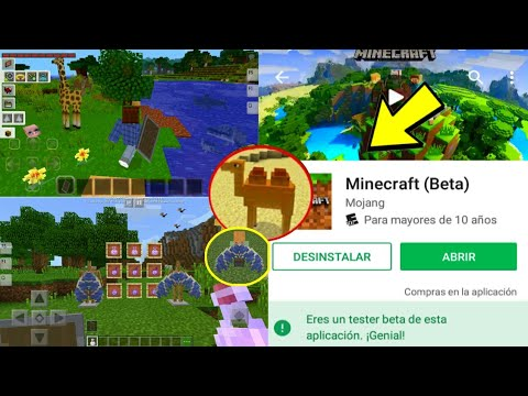 Como Descargar La Ultima Actualizacion De Minecraft Pe Gratis Descarga Ultima Actualizacion Minecraft Videos