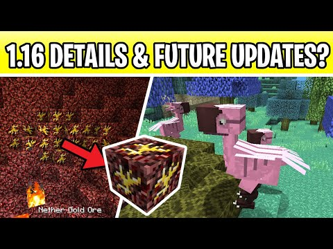 Minecraft 1 16 Nether Update Answers Aether Dimension New Biomes